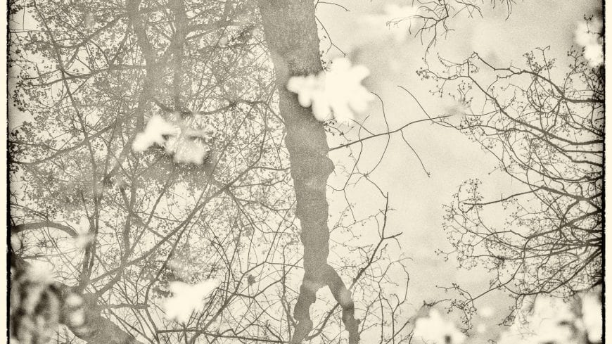 landschaft-black-white-12-von-19