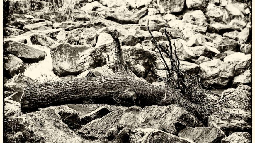 landschaft-black-white-18-von-19